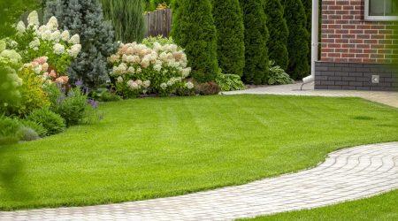 garden66pic